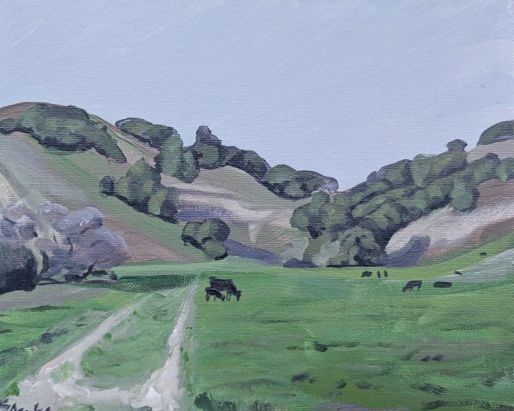 black oak valley copy